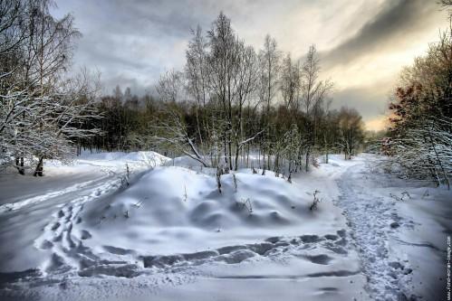 paysage-de-neige-20110105