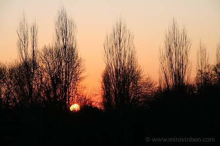 soleil-d-hiver