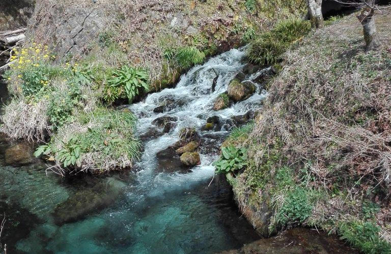 L'une des 100 eaux les plus pures du Japon
