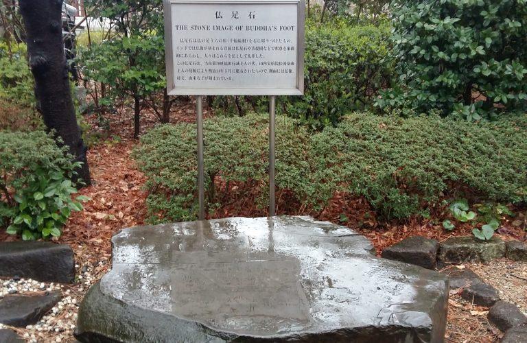 Pied de Bouddha