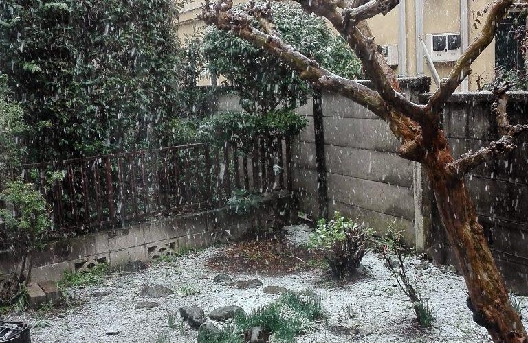 Il neige ! Le jour de l'Equinoxe du Printemps