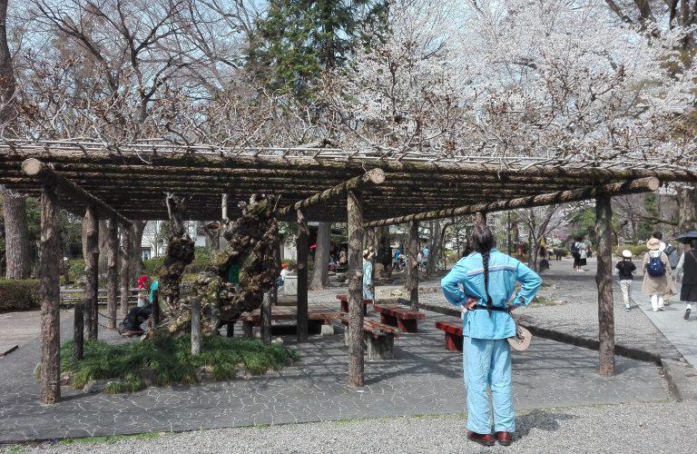 Japon - Blog Aigle Bleu (56)