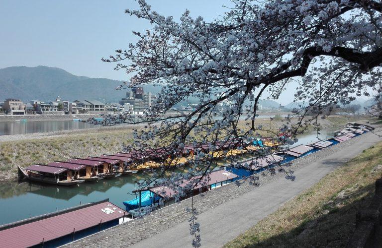 Japon - Blog Aigle Bleu (69)